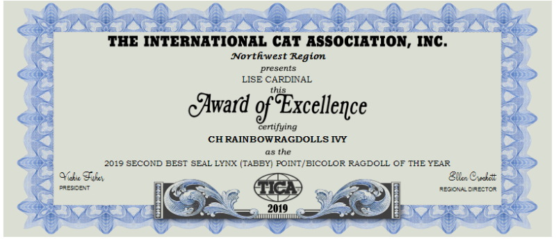 2019 SECOND BEST SEAL LYNX (TABBY) POINT-BICOLOR RAGDOLL OF THE YEAR (1)