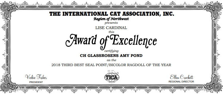 Amy award